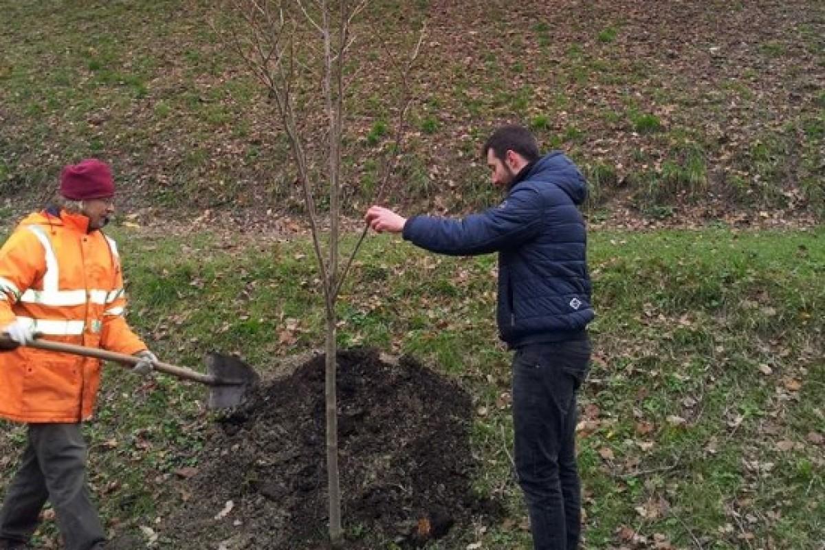 Regalati un albero: un dono d'amore a Villa Ghigi