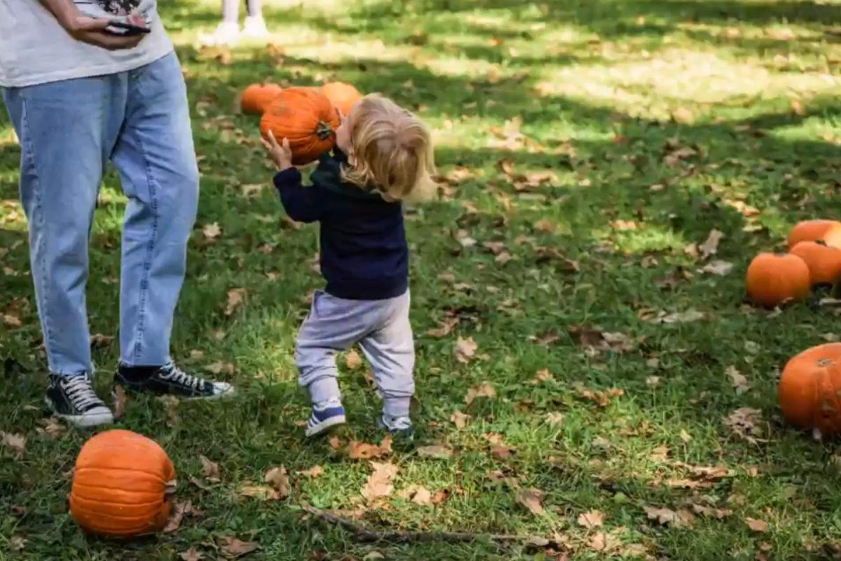 Halloween tra Escape Room e il Parco delle Zucche