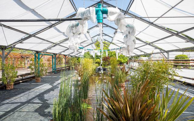 La Serra Madre, il nuovo spazio de Le Serre dei Giardini, apre al pubblico